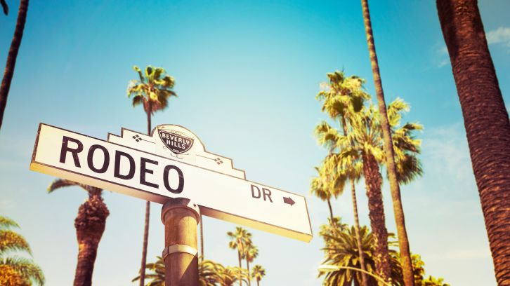 Rodeo Dr street sign surrounded by Palm Trees