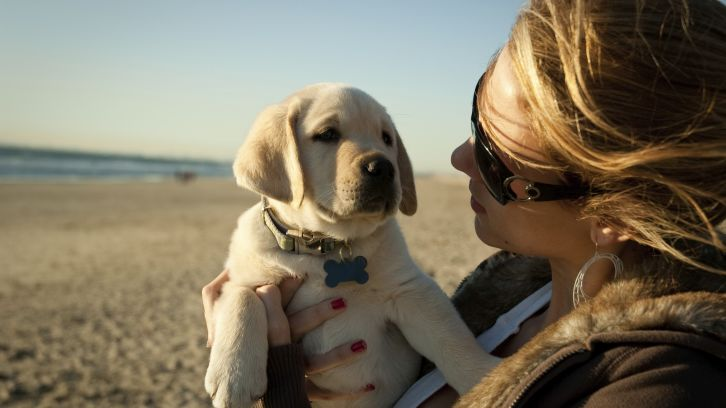 Woman Having Coffe By Outdoor Fireplace Dog On Moonstone Beach Holding Puppy