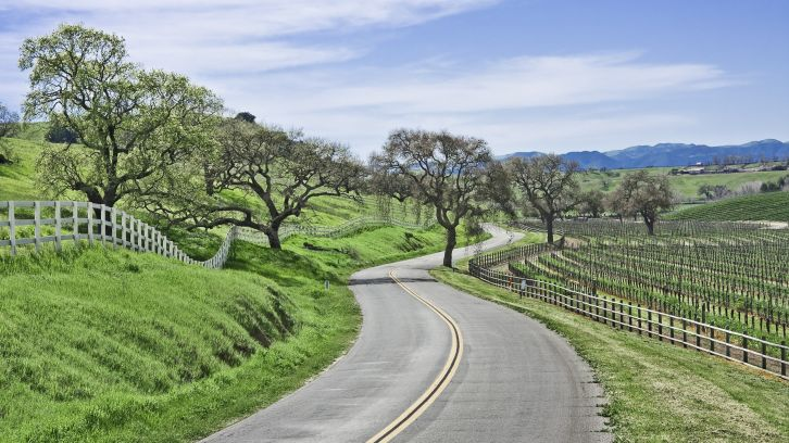 winding road surrounded by green hills