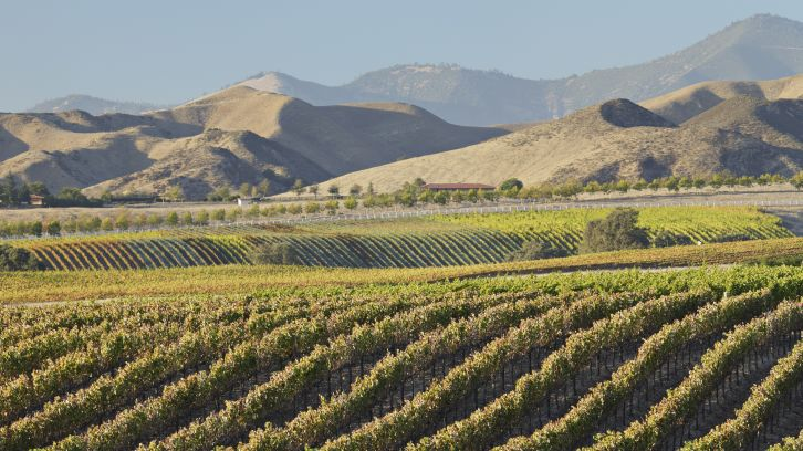 wine tasting hotels california